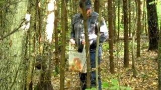 видео Советы начинаючему грибнику