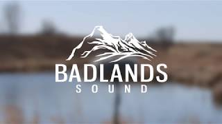 Small Lake - Field Recording MKH 8040