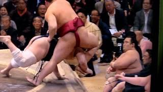 平成27年 初場所三日目 遠藤と安美錦の一番は安美錦の勝ちでしたが、よ...