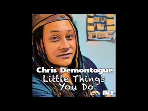 Chris Demontague - The Little Things You Do (2016 By Aquagem Records &  VPAL Music) mp3
