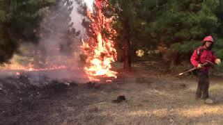 Incendio en El Maiten 030
