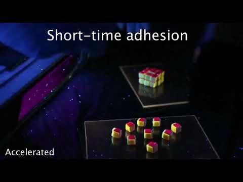 Ce Rubik's Cube en hydrogel va révolutionner le stockage de données