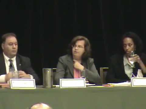 Public Sector Employment in Times of Crisis Conference Video, Panel 4