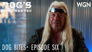 Dog's Most Wanted | Dog Bites: Episode Six | WGN America