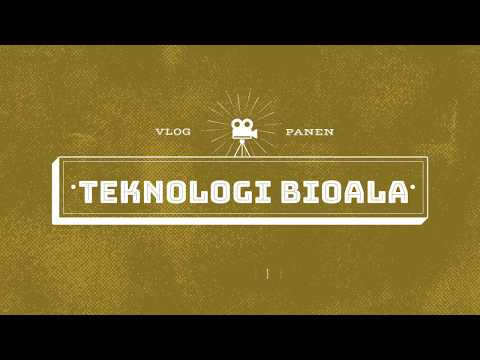 Panen Bayam Hasil Uji Aplikasi BioALA - VLOG #06