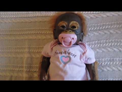 Little Umi Orangutan Doll Detailed Review