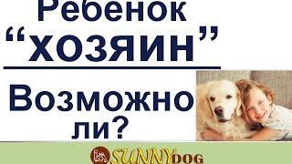 может ли ребенок быть хозяином для собаки