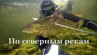 Подводная охота в северных реках Кольский полуостров 2020 г