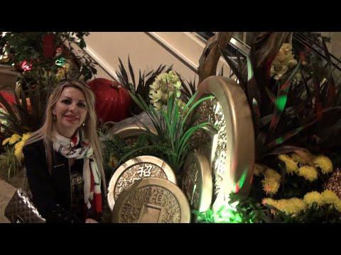 Amintiri din America Las Vegas 2017 video+foto