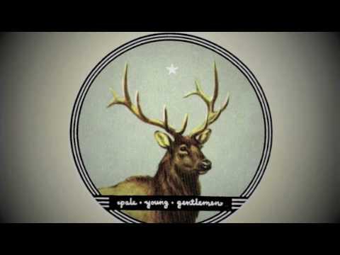 Pale Young Gentlemen - Saturday Night