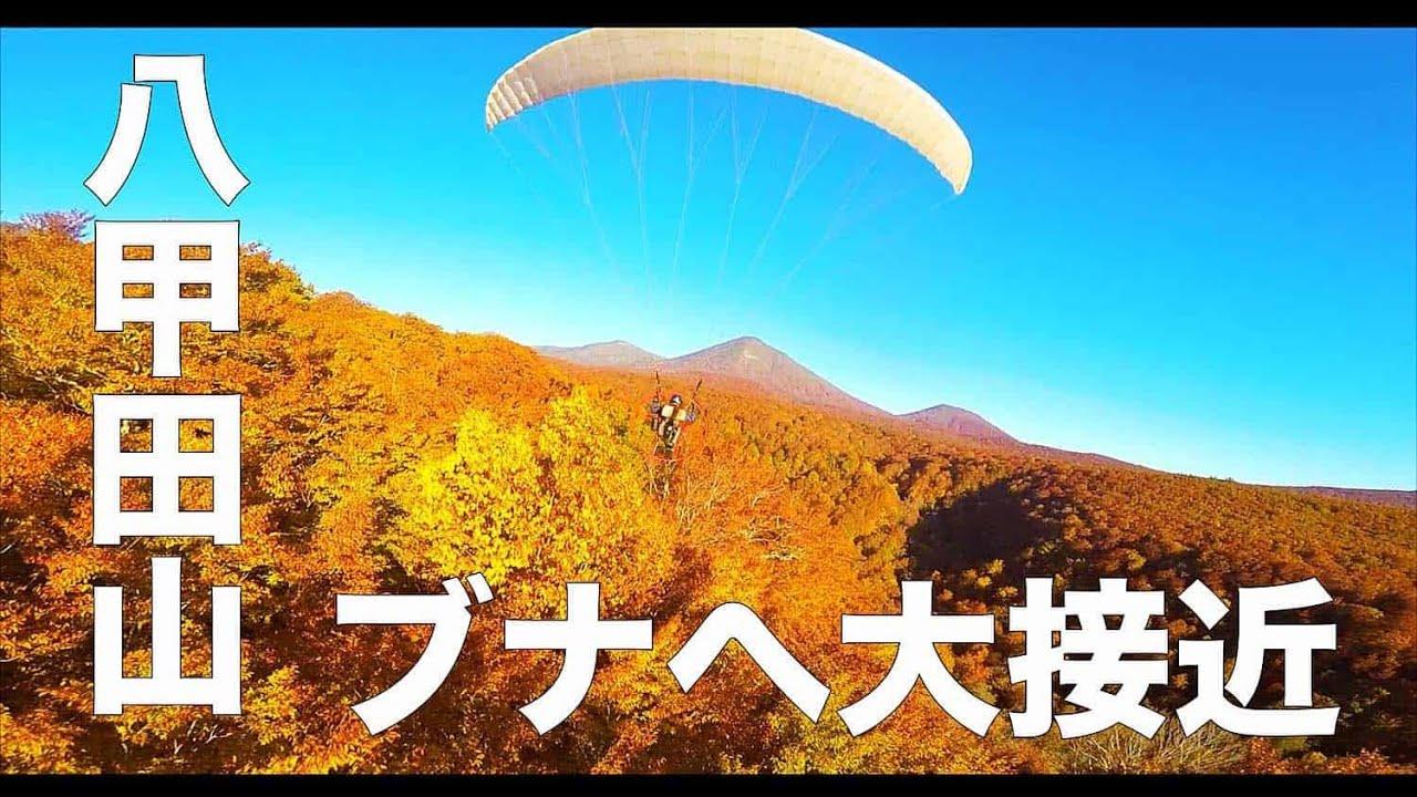 【紅葉・八甲田山・青森#149】「ブナの森へ大接近!」空撮・たごてるよし_AOMORI Aerial_TAGO channel