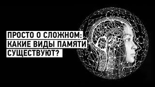 Просто о сложном: какие виды памяти бывают?