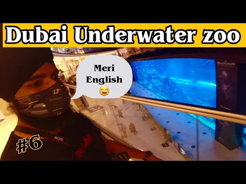 Dubai Aquarium & Underwater Zoo| The Dubai Mall | Dubai After Lockdown| Dubai 2021 | Dubai part-6
