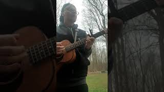 Luke combs- beautiful crazy cover Video