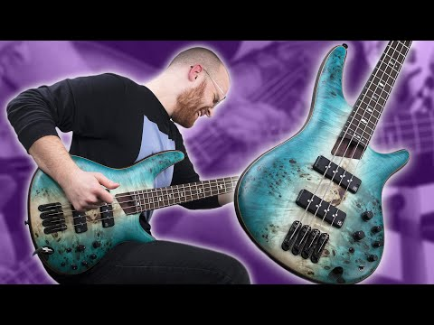The All-In-One BEAST! - Ibanez SR1600B [Demo]