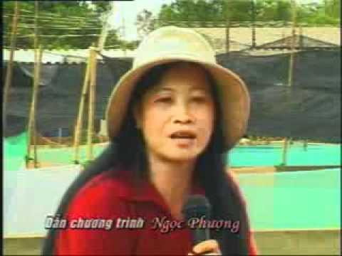 nuoi ech thai land