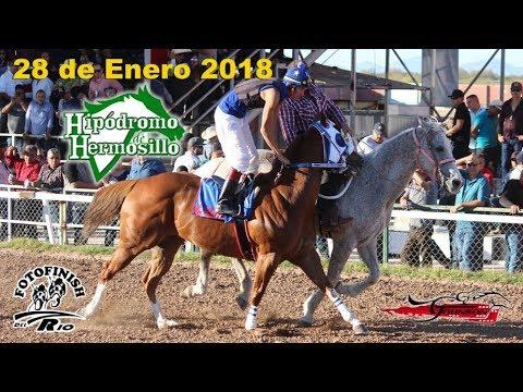 Carreras en el Hipodromo de Hermosillo 28 Enero 2018