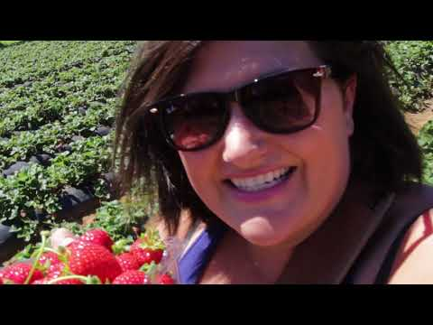 VLOG|| Sunny Ridge Strawberry Farm ||  Melbourne Australia