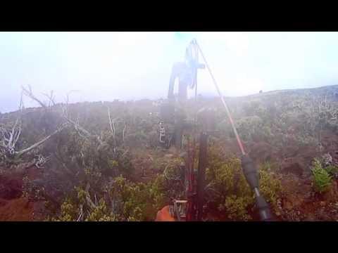 Bow Hunting Polipoli Maui,Hawaii