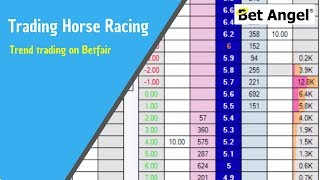 Trading on Betfair - Trend trading on Betfair racing markets