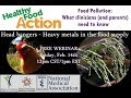 Food Pollution: What clinicians and parents need to know.  Heavy Metals in the Food Supply