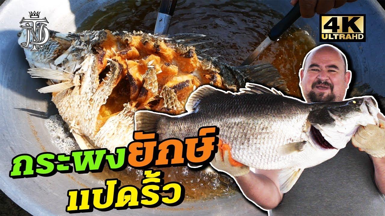 ปลากระพงยักษ์ แปดริ้ว | Giant Sea bass 10 KG.