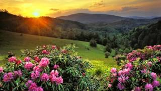 Božija svrha za čoveka - Osnove Hristove nauke