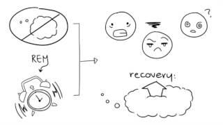 12 Psychological Sleep Facts