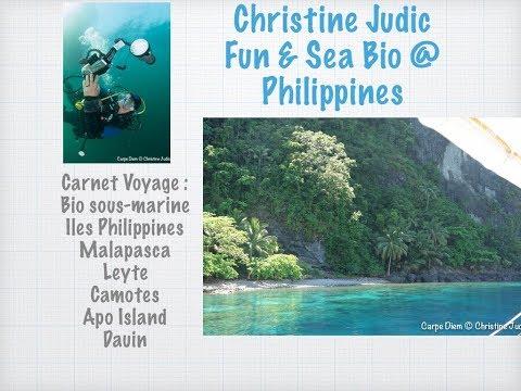 Carnet de voyage : Vie sous-marine aux philippines