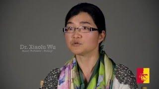 2016 Outstanding Faculty Recipient - Dr. Xiaolu Wu