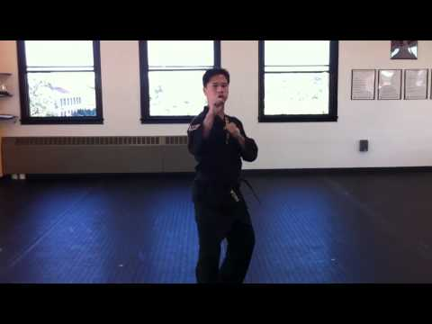 World Tang Soo Do form #1(full speed)
