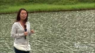 Repeat youtube video The Gioi Muon Mau - Tuyet Nhi - Alaska - episode 10 - part 2 of 2