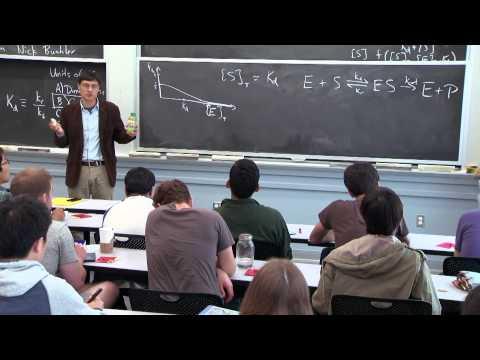 Input function, Michaelis-Menten kinetics, and cooperativity
