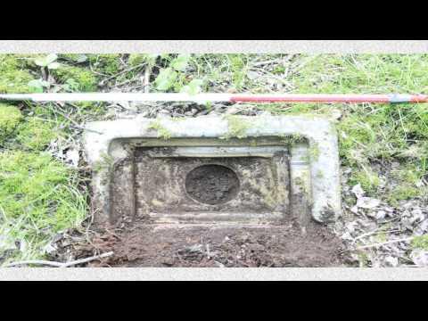 The Mavis Valley Project
