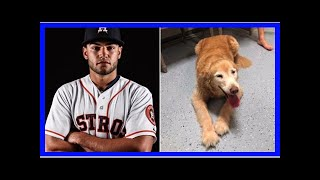 | Dog Rescue StoriesHouston Astros Pitcher Uses His Twitter To Reunite Lost Senior Dog With Family