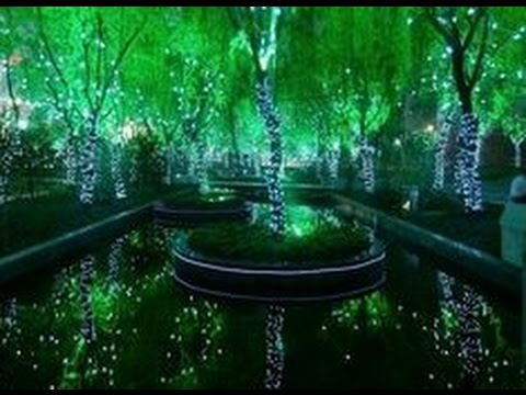 Amazing Magic Forest in Shanghai China & Amazing Magic Forest in Shanghai China - YouTube azcodes.com