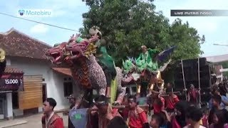 Lali Rasane Treno Nella Kharisma - Burok Ternbaru 2017