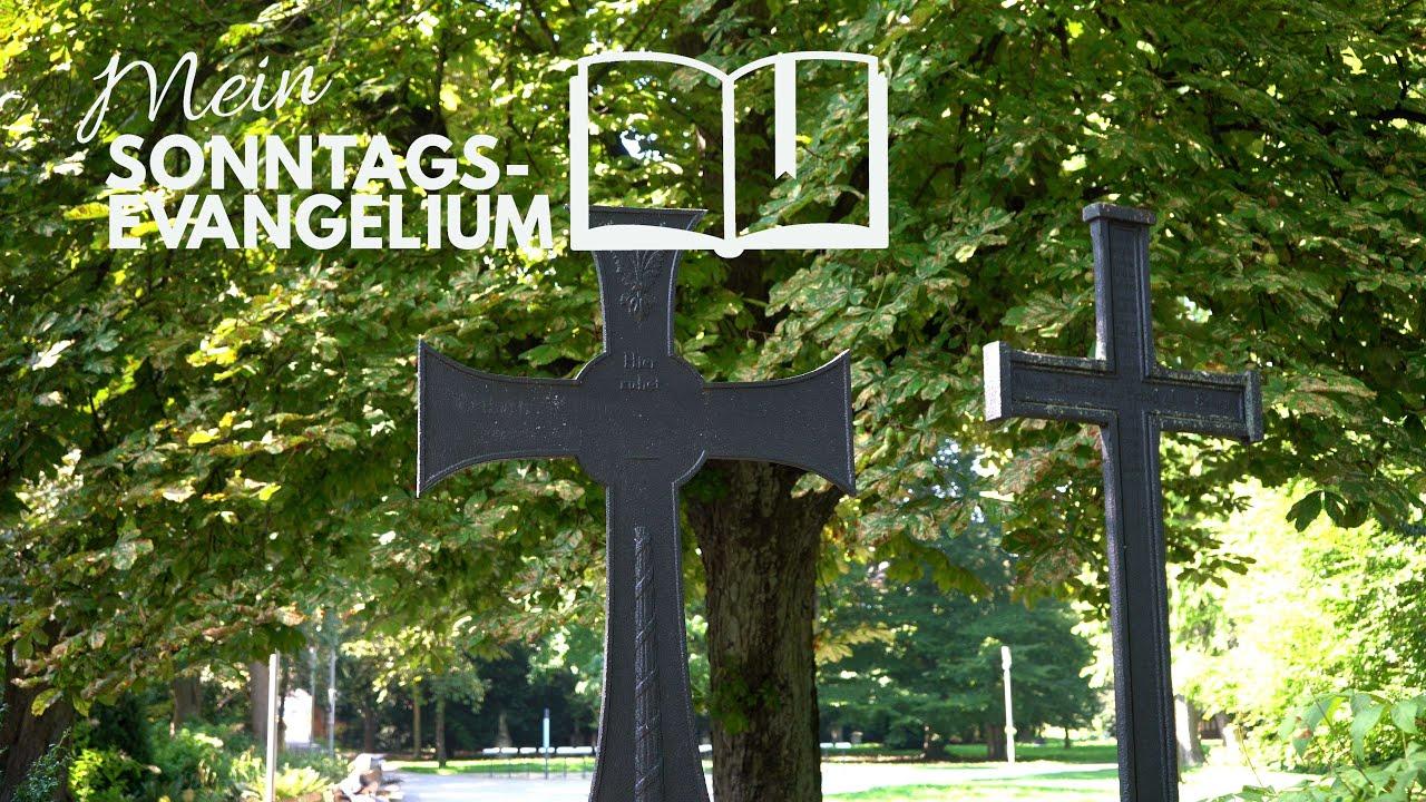 Mein Sonntagsevangelium: Das Kreuz tragen