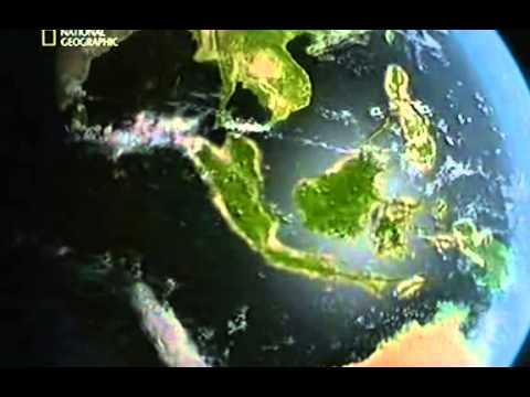 Youtube filmek kategória - Dinoszauruszok Ősvilág