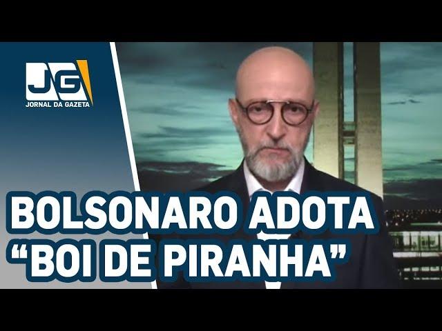 "Josias de Souza / Presidente Bolsonaro adota esquema ""boi de piranha"""