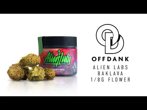 ALIEN LABS  | 3.5g BAKLAVA JAR PREMIUM FLOWER REVIEW