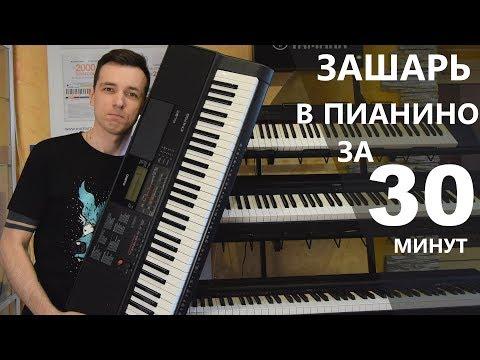Как выбрать цифровое пианино для начинающих