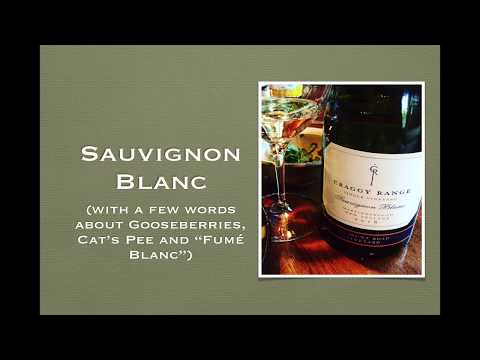 wine article Winecast Sauvignon Blanc