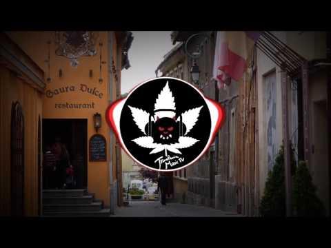 Foaie Verde ( Folklore of Romania Trap )