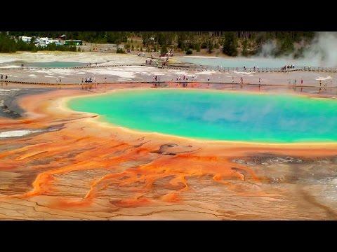 Yellowstone - Land To Life