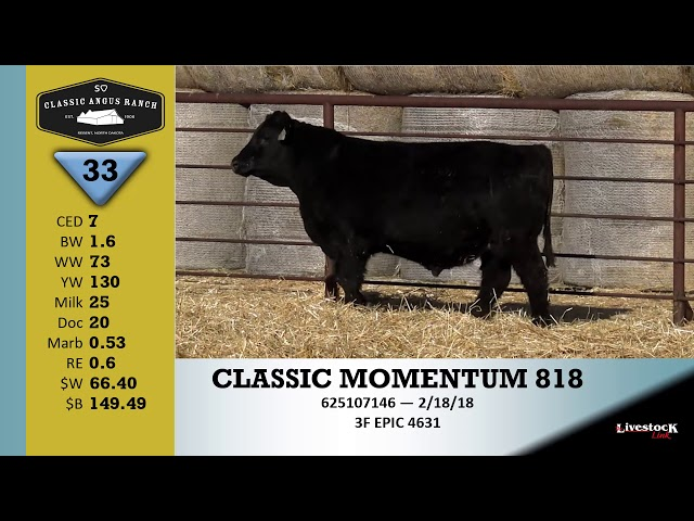 Classic Angus Ranch Lot 33