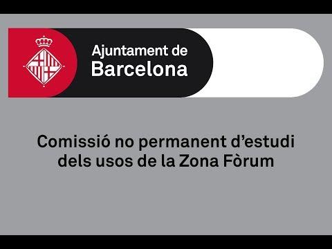 Comissió no permanent d'estudi dels usos de la Zona Fòrum