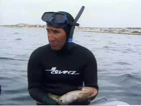Chasse sous-marine, les leçons de l'expérience avec Gérard Ségura