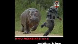 HYPO WAHNSINN 5 von 5