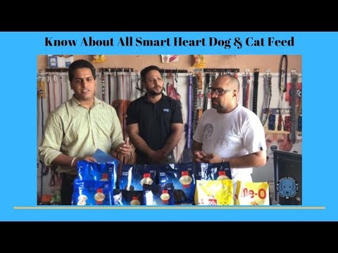 Pet Care - Know About All Smart Heart Dog & Cat Feed - Special guest - Bhola Shola
